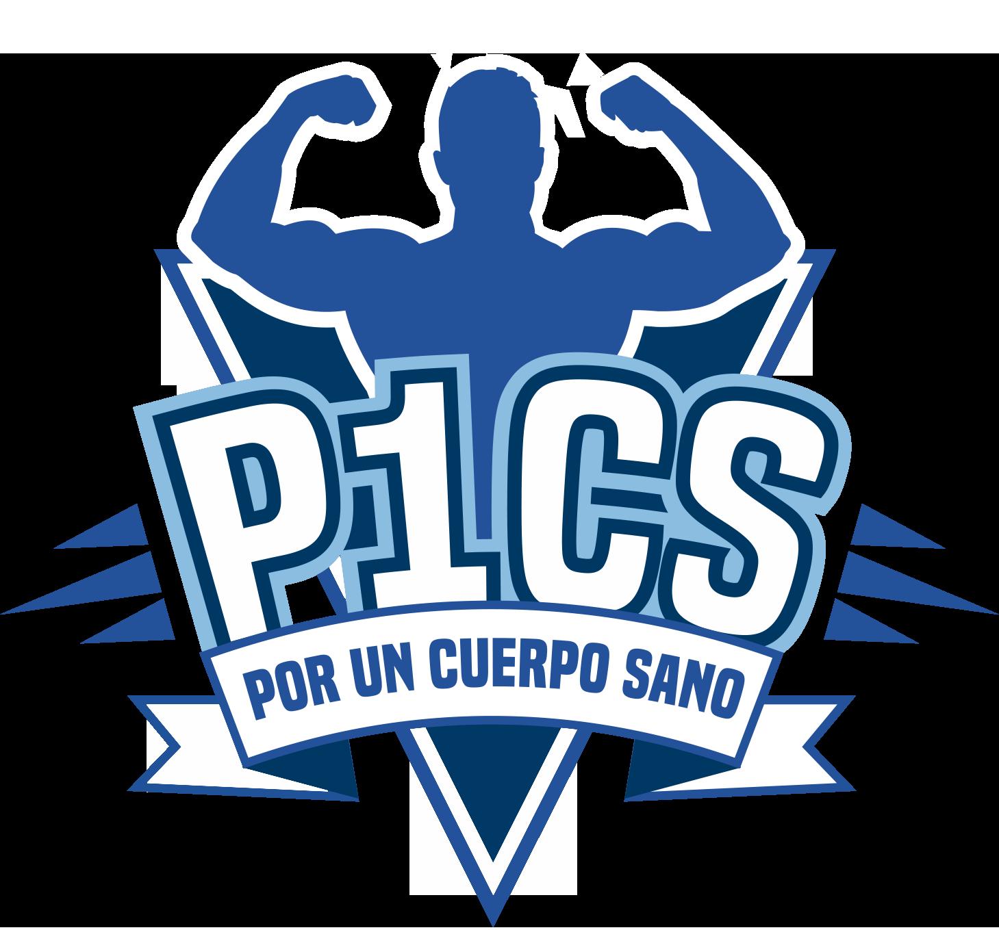 LOGO P1CS